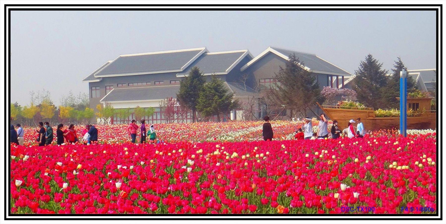 2014年锦州世博园发帖到哪版块