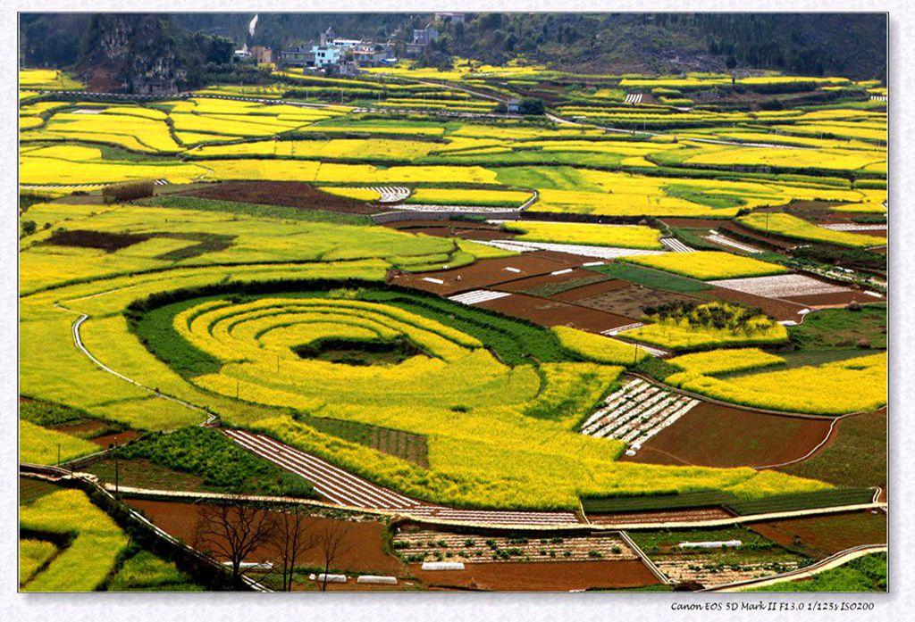 多彩贵州一万峰林风景区 - 百花齐放 - 锦州新闻网